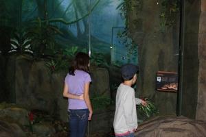 zoo10 2013